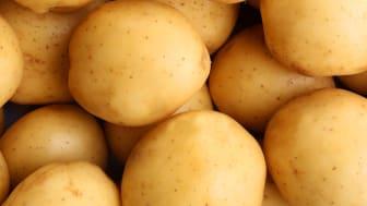 Suomalaisille kuluttajille tuttu peruna saapuu jatkossa tarjolle uudenlaisessa pakkauksessa