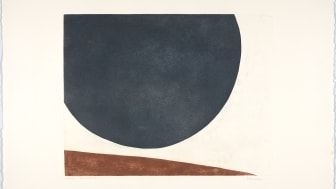 A journey into Anna-Eva Bergman's graphic universe