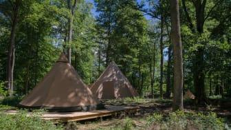 Camp Oak en unik tältby mitt Skånes Djurpark som öppnar sommaren 2018.