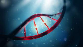 3D Illustration of DNA molecule. Close of concept human genome