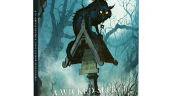 Vaesen A Wicked Secret