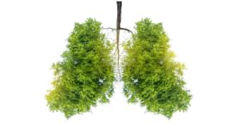 Hvordan påvirker radon menneskers helse?