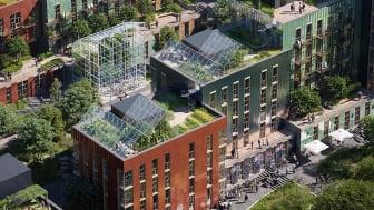 """""""Recipe for future living"""" er et av prosjektene som er planlagt på utbyggingsområdet i Aasta Hansteens vei 2. (Ill. Mad Arkitekter)"""