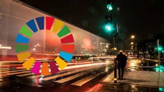 Svenska forskare banar väg för FN:s globala hållbarhetsmål