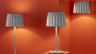 """Lampan """"AVS"""" Anna von Schewen / Bsweden"""