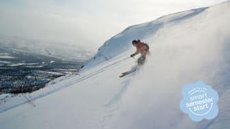 Skidåkare i backen. Foto: Shutterstock.
