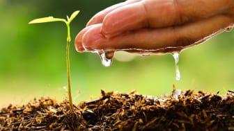 Bioergex-Water-Soluble-Fertilizers.jpg