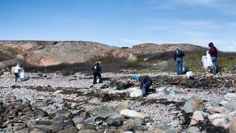 Städa havet och bidra till en bättre miljö under Västerhavsveckan