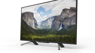 43 inch WF66 Full HD HDR TV series