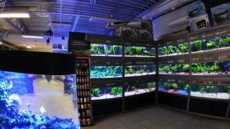 Kristianstad Zoologiska akvaristik