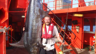 3,38 meter blue marlin og en noget kortere, men stolt fisker Mikkel Hansen på 'Esvagt Connector'.