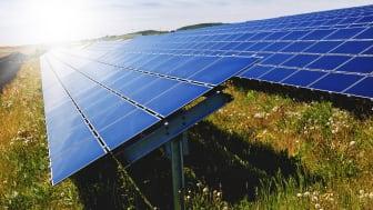 Kommuninvest emitterar 7 miljarder kr i ny grön obligation