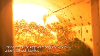 Fossilfri uppvärmning av växthus, arbetshall och kontor + BIOKOL