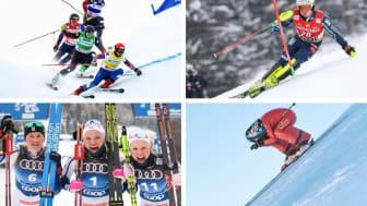Världscuptävlingar i längdskidor i Ulricehamn och Falun, alpina damtävlingar i Åre samt skicross och speedski i Idre arrangeras i vinter.