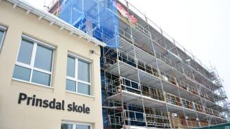 Massivtrebygg reises på Prinsdal. Foto: Benedicte Nylund