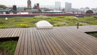 Illustrasjonsbilde: Taket på Vega scene er bygget for å håndtere overvann effektivt. Foto: Èse Holte.