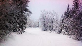 Vinterns första längdspår preparerade på Storhogna Högfjällshotell & SPA