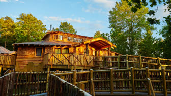 New Treehouses at Elveden Forest