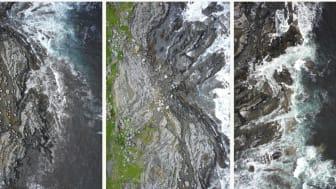 Når forskerne flyr dronen 100 meter over bakken, tar den bilder med en oppløsning på én pixel per 3 x 3 cm. Til sammenligning tar satellitter bilder med en oppløsning på 30 x 30 meter. Bildene er altså 1000 ganger bedre med drone enn med satellitt.