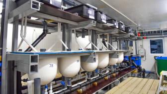 Lobster Farm Production Facility