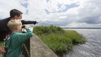 Fågelskådning invid Finjasjön och Hovdala Naturområde.