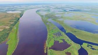 Exempel på inlandsvatten som studerades i västra Sibirien. Foto: Egor Istigechev