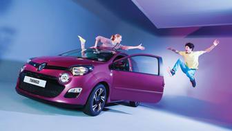 Sparegrisen Renault Twingo