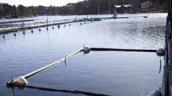 Båtbottentvätt i vatten. Foto: Maja Kristin Nylander