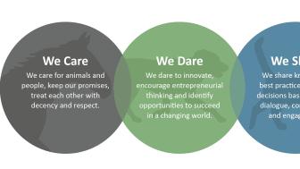 Values circles