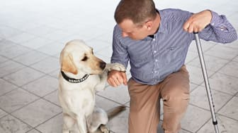 Magnus Berglund, Accessibility Director at Scandic Hotels, with his service dog Dixi
