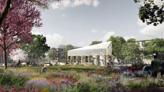 Sådan kan orangeriet i Kirsebærhavens Planteskole muligvis se ud. Illustration: NORD Arkitekter