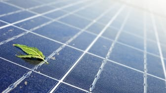What EU's new renewable target will mean for solar energy