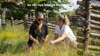 Sara från Alvesta kommun och Karin från Veg Tech