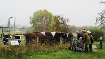 Efterårsferie er familietid, og der er gode muligheder for at komme ud i det fri ved Tadre Mølle i uge 42. Foto: ROMU.