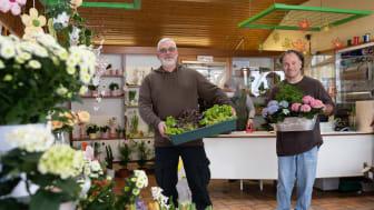 Klaus Lewinsohn und Klaus Göttig (von links) bringen das frische Bio-Gemüse direkt vom Beet in den Gärtnerei-Laden.