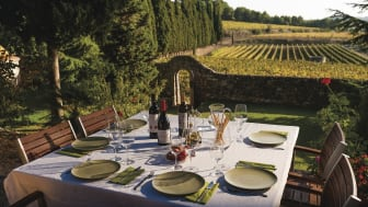Nyt katalansk vin på terrasser og vinbarer