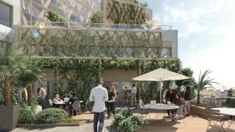 Södra Hagalund_Vy över gröna terrasser på kontorsbyggnaden_BSK Arkitekter
