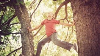 Die Natur spielerisch entdecken: Der SAUBER ENERGIE Waldpreis fördert gemeinnützige Waldprojekte in Deutschland. Foto: AdobeStock