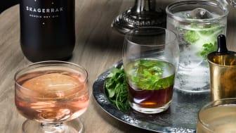 Skagerrak Nordic Dry Gins nya ambassadör Emil Åreng tipsar om drinkar med den prisbelönta produkten