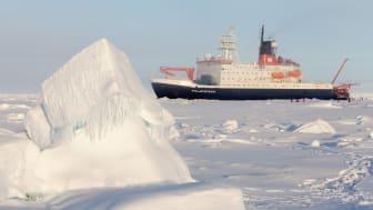 En ny studie viser hvordan arktisk forskning påvirket en global miljøkonvensjon – men også om dilemmaer som oppstår på veien fra vitenskap til politikk. (Illustrasjonsfoto: Alfred-Wegener-Institut/Mario Hoppmann (CC-BY 4.0))