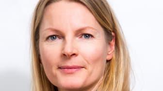 Pernilla Rönnlund, Organisationskonsult, Previa