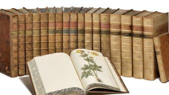 G.C. Oeder: Flora Danica. København 1761–1883. Komplet med 3240 originale håndkolorerede plancher. Vurdering: 300.000-400.000 kr.