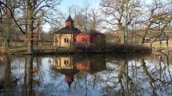 Torups bokskog är ett av de nya naturreservaten i Skåne under 2019. Foto: Gunilla Davidsson Lundh