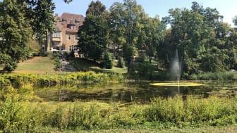 Ein sonniger Tag in der Villa Westerberge