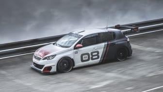308 Racing Cup