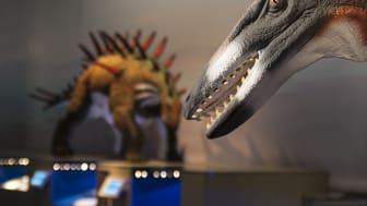 Fler dinosaurier till Naturhistoriska riksmuseet