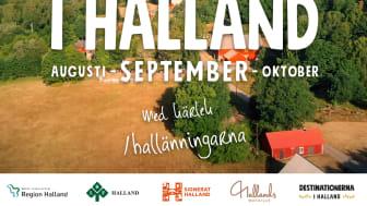 I Halmstad startar vi skördefesten den 17 augusti med Bondens egen Marknad på Stora Torg.
