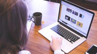 Hela listan: Länen med flest synliga företag på webben
