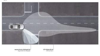 Segmented turning light
