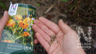 Skapa nya odlingsvanor med Nelson Garden